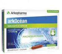 Arkocean Magnesium Marin Solution Buvable Caramel 20 Ampoules/10ml à NANTERRE