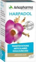 Arkogelules Harpagophyton Gélules Fl/150 à NANTERRE
