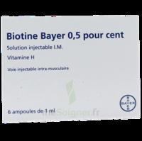 Biotine Bayer 0,5 Pour Cent, Solution Injectable I.m. à NANTERRE