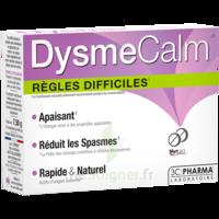 Dysmecalm Comprimés B/15 à NANTERRE