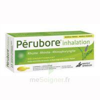 Perubore Caps Inhalation Par Vapeur Inhalation Plq/15 à NANTERRE