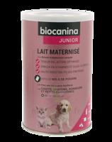Biocanina Lait Poudre Maternisé B/400g à NANTERRE
