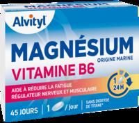 Govital Magnésium Vitamine B6 Comprimés B/45 à NANTERRE